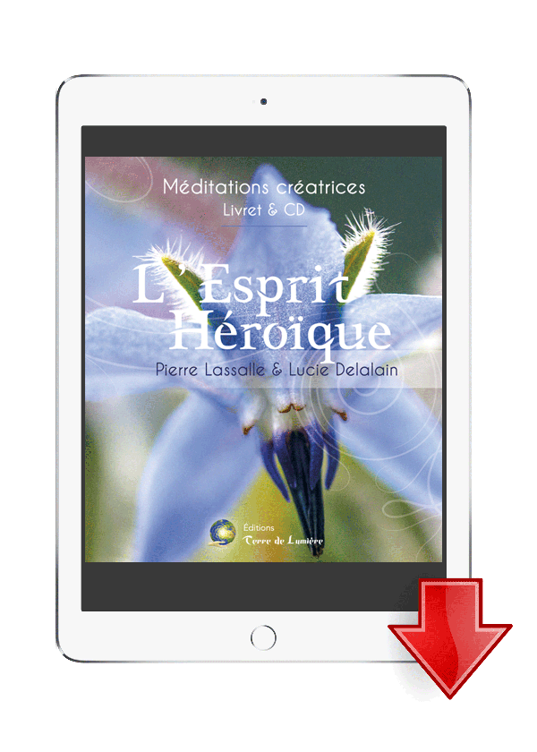 livre meditation esprit heroique - Pierre Lassalle