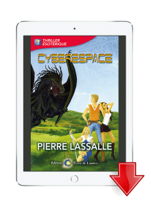 ebook Cyberespace - Pierre Lassalle