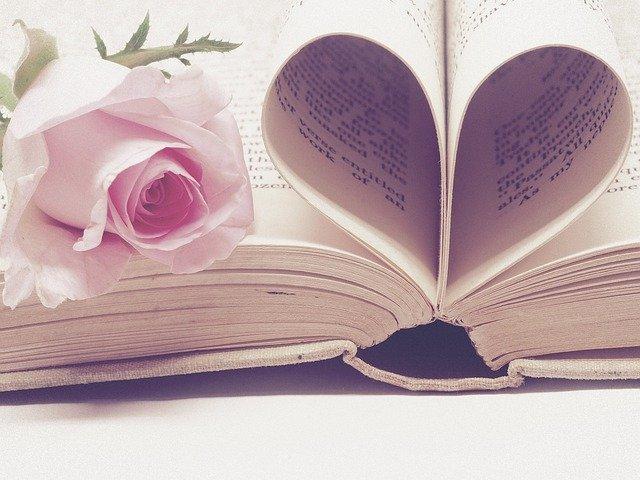 Plaidoyer amoureux en faveur des livres et la nouvelle culture