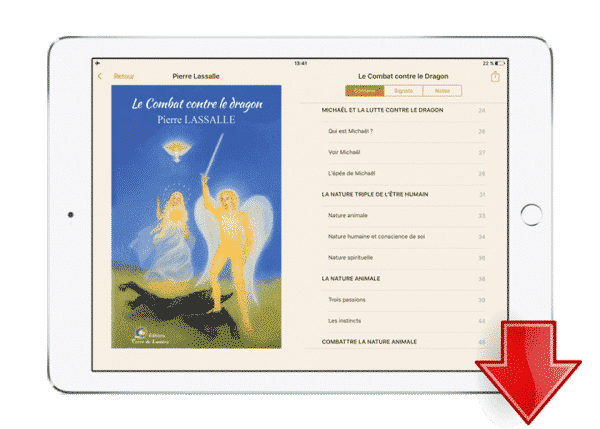 ebook combat contre le dragon - Pierre Lassalle