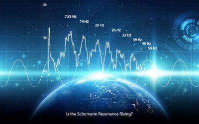 Vivre en harmonie avec la fréquence de la Terre