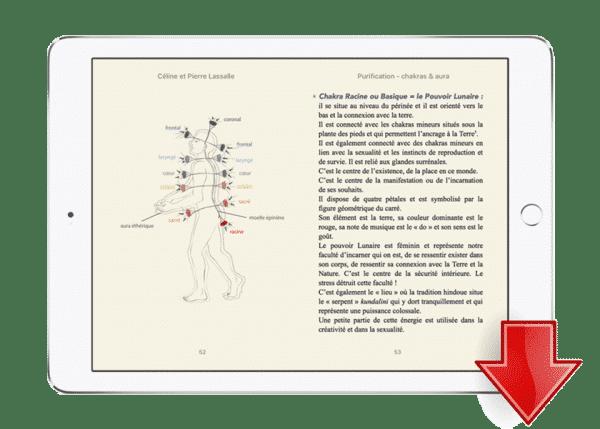 ebook mp3 meditation purification