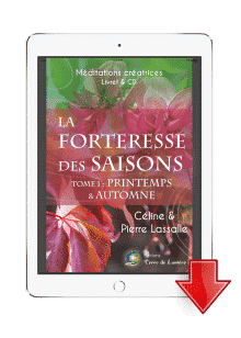 meditation archange michael meditation archange raphael ebook meditation forteresse des saisons tome 1 printemps automne